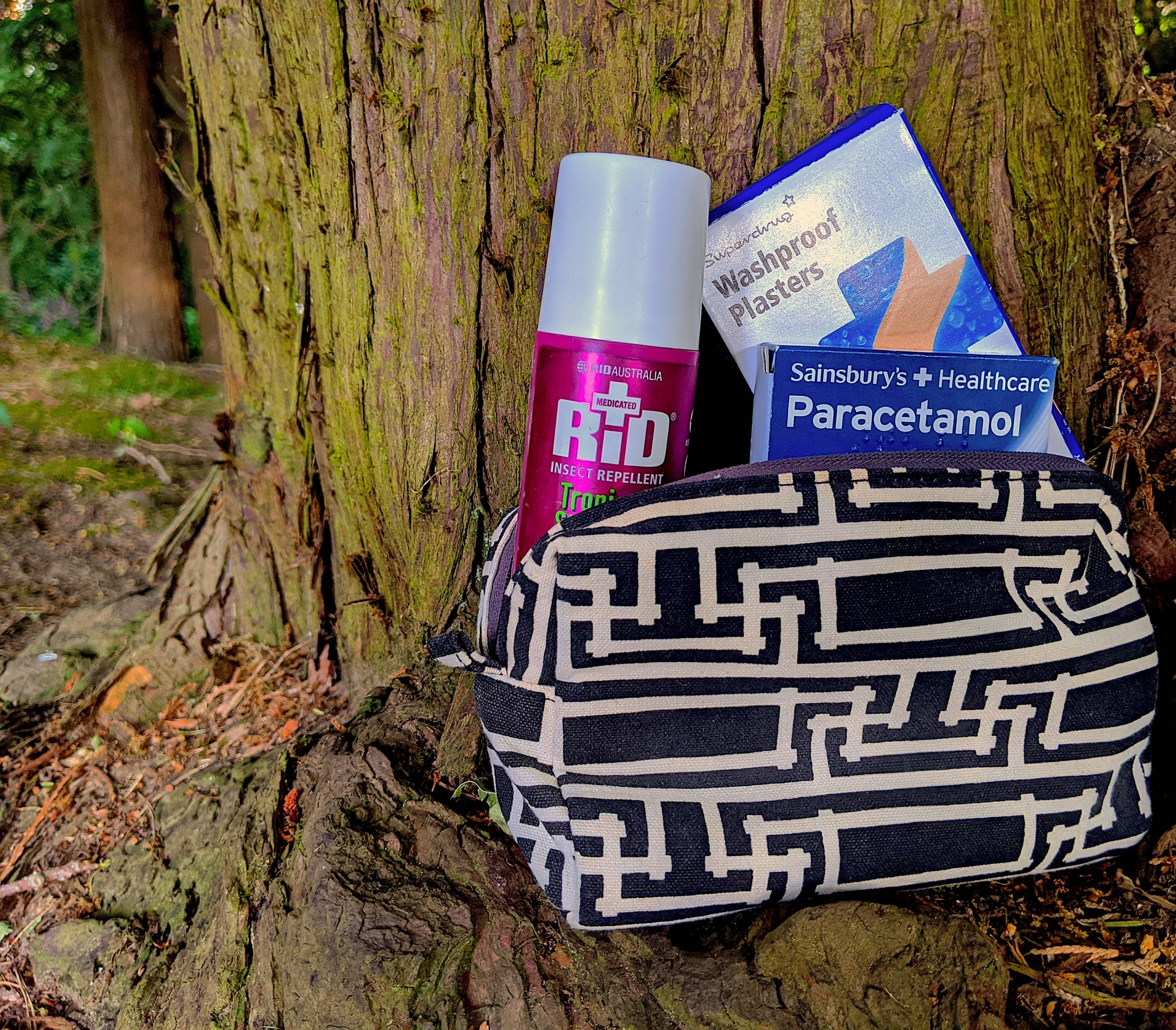 Paracetamol, insect repellent, and plasters poking out of a toiletries back in the woods